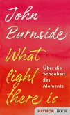What light there is (eBook, ePUB)