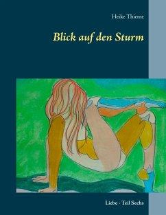 Blick auf den Sturm (eBook, ePUB)