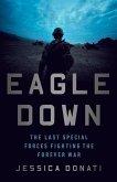 Eagle Down (eBook, ePUB)
