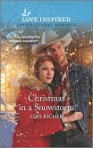 Christmas in a Snowstorm (eBook, ePUB)
