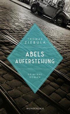 Abels Auferstehung / Paul Stainer Bd.2 - Ziebula, Thomas