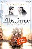 Elbstürme / Eine hanseatische Familiensaga Bd.2