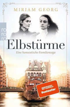Elbstürme / Eine hanseatische Familiensaga Bd.2 - Georg, Miriam