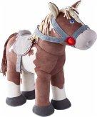 Pferd Joey