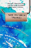 Now You Are in Trouble! or Where Did All the Toilet Paper go? (eBook, ePUB)