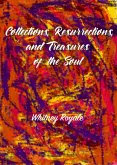 Collections, Resurrections, and Treasures of the Soul (eBook, ePUB)