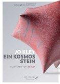Jo Kley: Ein Kosmos Stein.