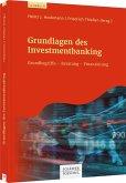 Grundlagen des Investmentbanking