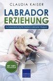 Labrador Erziehung - Hundeerziehung für Deinen Labrador Welpen (eBook, ePUB)