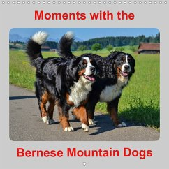 Moments with the Bernese Mountain Dogs (Wall Calendar 2021 300 × 300 mm Square)