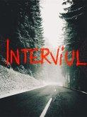 Interviul (eBook, ePUB)