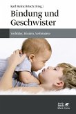 Bindung und Geschwister (eBook, PDF)