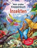Mein großes Klappenbuch - Insekten