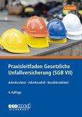 Praxisleitfaden Gesetzliche Unfallversicherung (SGB VII)