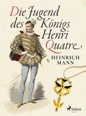 Die Jugend des Königs Henri Quatre (eBook, ePUB)