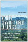 Mexico's Community Forest Enterprises: Success on the Commons and the Seeds of a Good Anthropocene