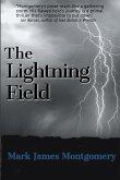 The Lightning Field