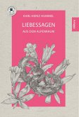 Liebessagen (eBook, PDF)
