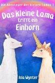Das kleine Lama trifft ein Einhorn (eBook, ePUB)