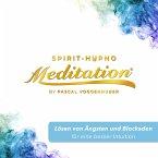 Lösen von Ängsten und Blockaden für eine besser Intuition (MP3-Download)