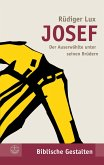 Josef (eBook, PDF)