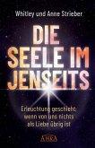 DIE SEELE IM JENSEITS (eBook, ePUB)