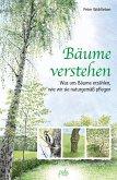 Bäume verstehen (eBook, ePUB)