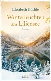 Winterleuchten am Liliensee (eBook, ePUB)