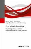 Praxisbuch Adoption (eBook, PDF)