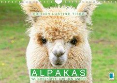 Alpakas: Wuschelköpfe aus den Anden - Edition lustige Tiere (Wandkalender 2021 DIN A4 quer) - Calvendo, K. A.