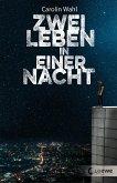 Zwei Leben in einer Nacht (eBook, ePUB)