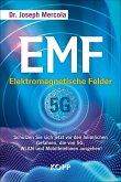 EMF - Elektromagnetische Felder (eBook, ePUB)