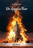 Die Geige im Feuer (eBook, ePUB)