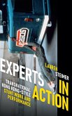 Experts in Action: Transnational Hong Kong-Style Stunt Work and Performance