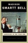 Lavoisier in the Year One: The Birth of a New Science in an Age of Revolution (Great Discoveries) (eBook, ePUB)