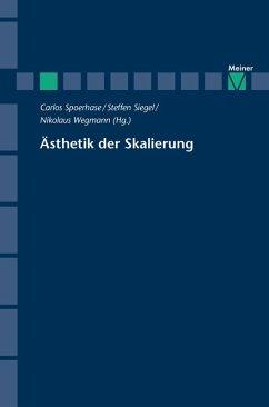 Ästhetik der Skalierung (eBook, PDF)