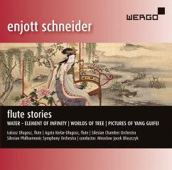Flute Stories - Dlugosz/Blaszczyk/Silesian Philharmonic So