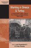 Working in Greece and Turkey (eBook, ePUB)