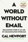 A World Without Email (eBook, ePUB)