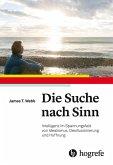 Die Suche nach Sinn (eBook, PDF)