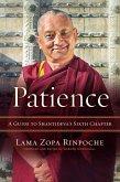 Patience (eBook, ePUB)