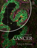 The Biology of Cancer (eBook, PDF)