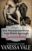 Die Versandbra¨ute von Slate Springs Sammelband - Bu¨cher 1 - 3 (eBook, ePUB)