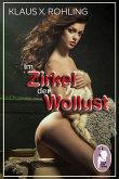Im Zirkel der Wollust (BDSM, MaleDom) (eBook, ePUB)