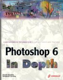 Photoshop 6 in Depth: New Techniques Every Designer Should Know for Today's Print, Multimedia, and Web with CDROM [With CDROM]