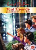 Fünf Freunde - 3 Abenteuer in einem Band / Fünf Freunde Sammelbände Bd.6 (Mängelexemplar)