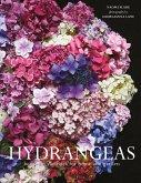Hydrangeas (eBook, ePUB)
