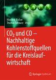 CO2 und CO – Nachhaltige Kohlenstoffquellen für die Kreislaufwirtschaft (eBook, PDF)