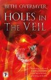 Holes in the Veil (eBook, ePUB)