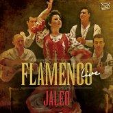 Flamenco Live